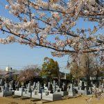 本庄市成就院墓地